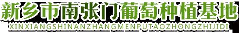 南张门葡萄园种植基地